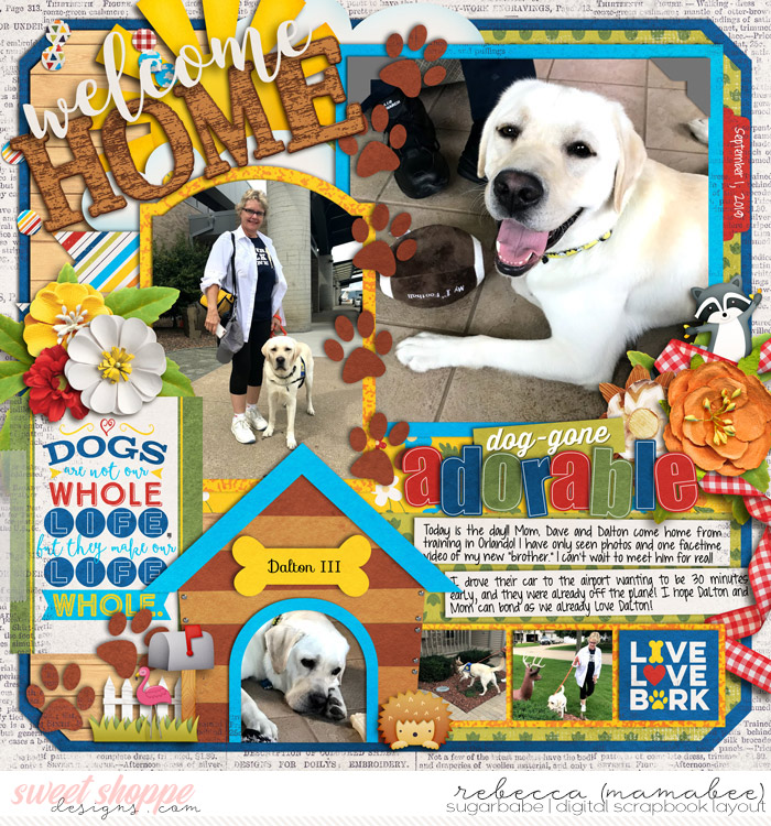 2018_9_1-welcome-home-dalton-mydog