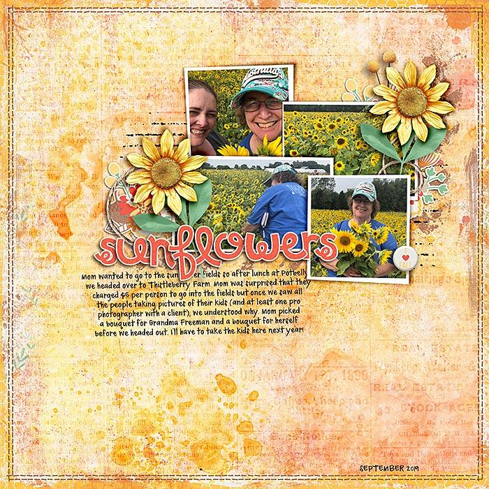 2019-09-Sunflowers-sm