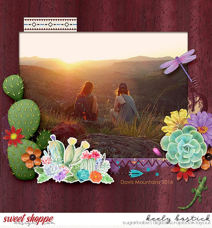 Davis-Mountains-11-13-WM