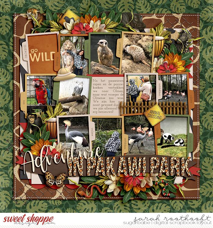 Adventure in Pakawi Park