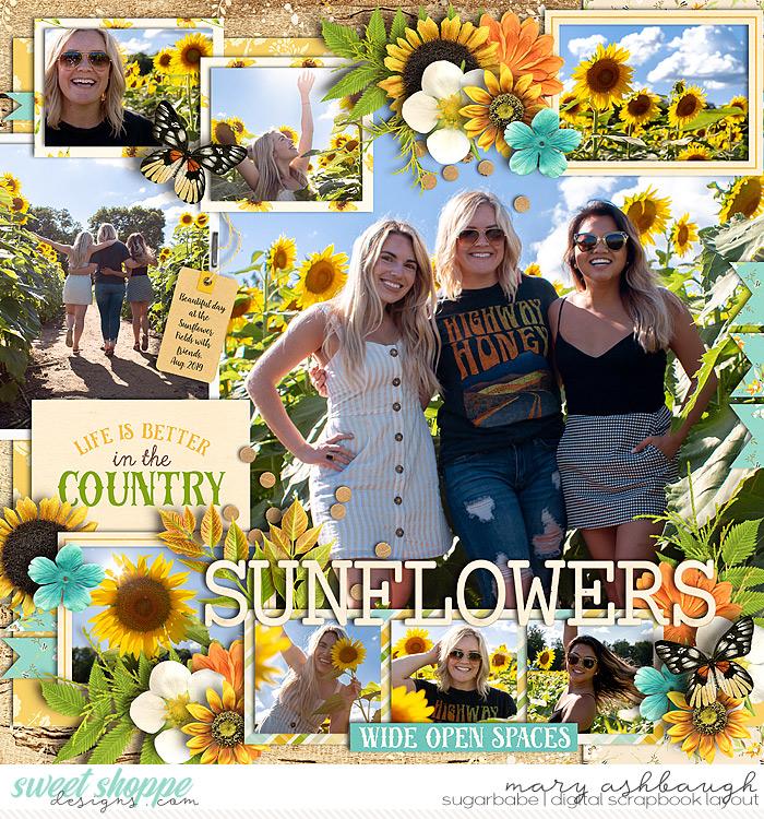 Sunflowers_SSD_mrsashbaugh