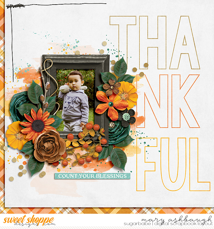 Thankful_SSD_mrsashbaugh2