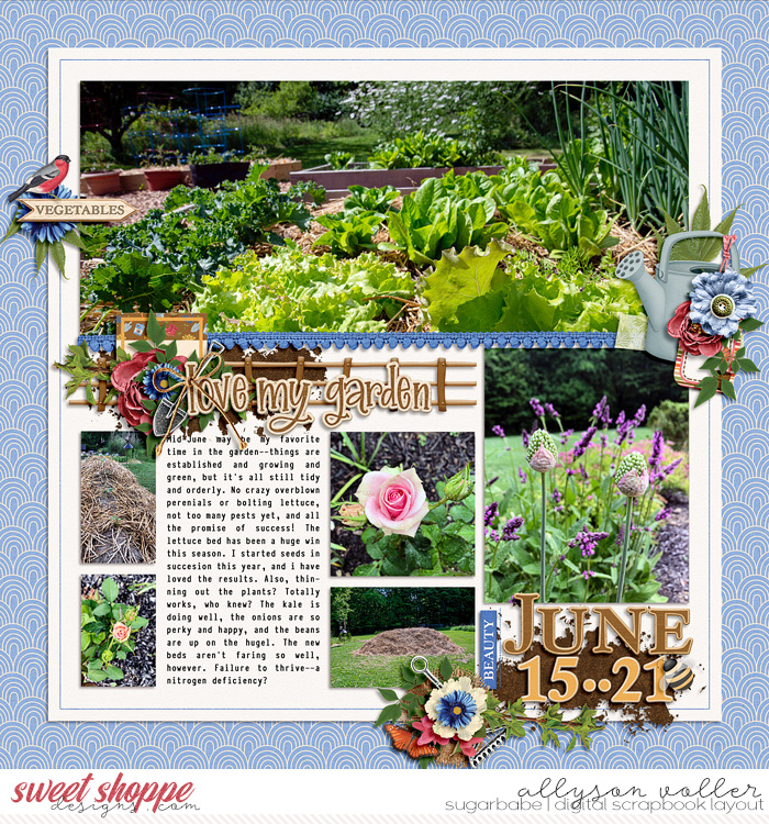 Garden journal June 15-21 01