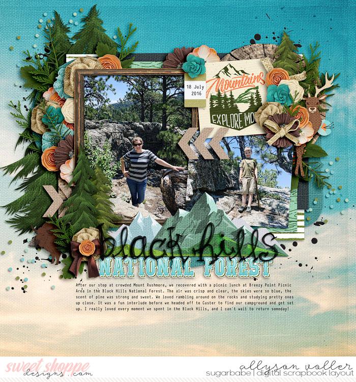 Black Hills National Forest
