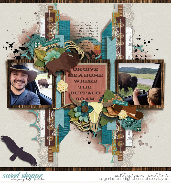 allyanne_Wyoming_paperplayno1_01_WM
