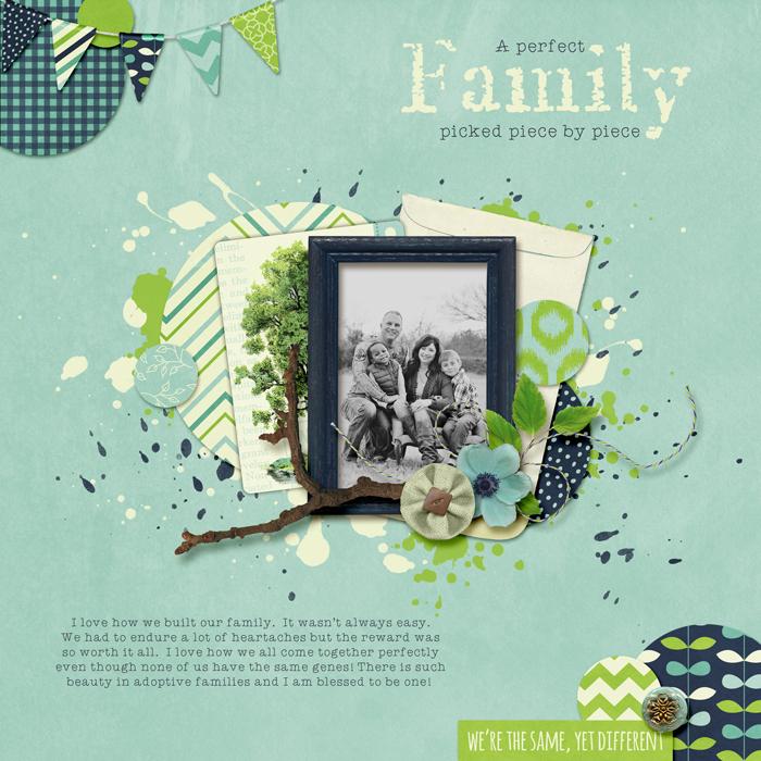 perfectfamily700