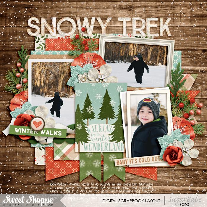 snowy-trekwm