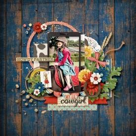 09-08-lil-cowgirl.jpg