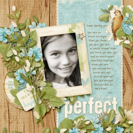 12-06-17-Perfect-700.jpg