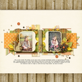 12-10-24-herfst.jpg