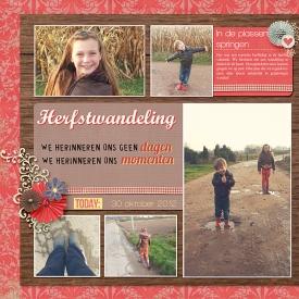 12-10-30-herfstwandeling_L.jpg