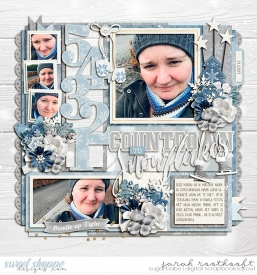 12WoodlandChristmasWinterWondersSingle206Countdownweb.jpg
