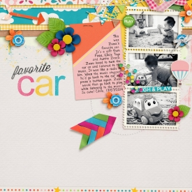 140713-zuzu-car700.jpg