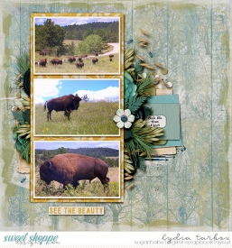 140820-Black-Hills-Bison-Watermark.jpg