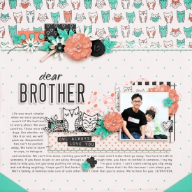 140911-brother700.jpg
