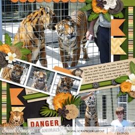 16-01-09-Danger-wild-animals-700b.jpg