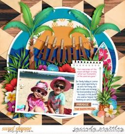 16-11-14-Aloha-700b.jpg