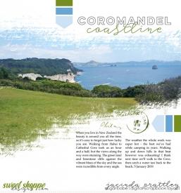 19-01-05-Coromandel-Coast-700b.jpg