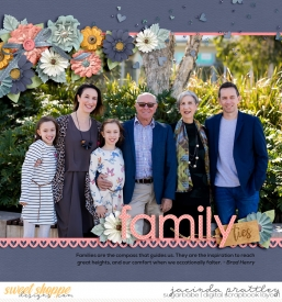 19-06-01-Family-ties-700b.jpg