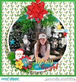 19-11-17-Merry-and-bright-700b.jpg
