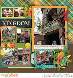 20-01-03-Magic-Kingdom-2-700b.jpg