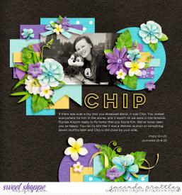 20-01-10-Chip-700b.jpg