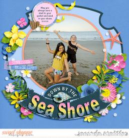 20-01-22-Sea-shore-700b.jpg