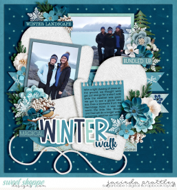 20-07-21-Winter-walk-700b.jpg
