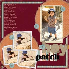 20071008_FAB_hay_patch.jpg