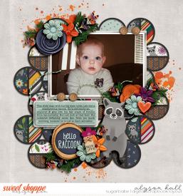 2008-11-Hello-Raccoon-WEB-WM.jpg