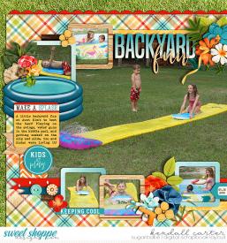 2010-05-30_BackyardFun_WEB_KC.jpg