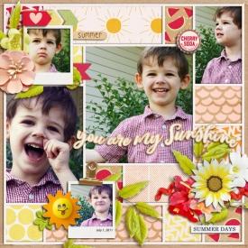 2011_7_1-you-are-my-sunshine-HP259pg1.jpg