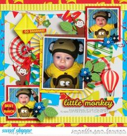 2012-11-6-Little-Monkey.jpg
