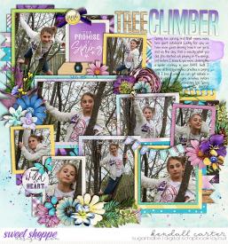 2013-04-03_TreeClimber_WEB_KC.jpg