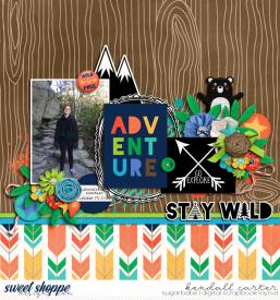 2015-10-17_StayWild_WEB_KC.jpg