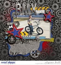 2018-03-BMX-WEB-WM.jpg