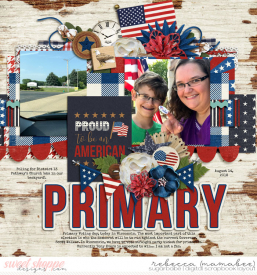 2018_8_14-primary-voting-ponytails-rayoflight3-2.jpg