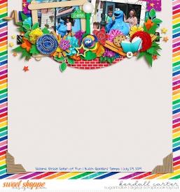 2019-07-29_SesameSt_WEB_KC.jpg