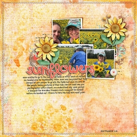 2019-09-Sunflowers-sm.jpg