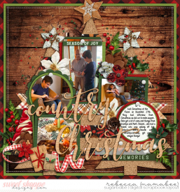 2019_12_27-christmas-at-the-farm-cschneider-set254pg1.jpg