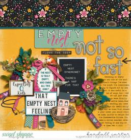2021-02-03_EmptyNest_WEB_KC.jpg