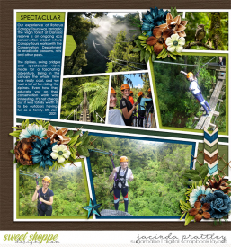 21-01-05-Forest-adventures-1-700b.jpg