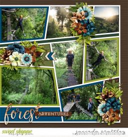 21-01-05-Forest-adventures-2-700b.jpg