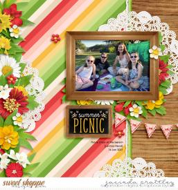 21-01-16-Summer-picnic-700b.jpg