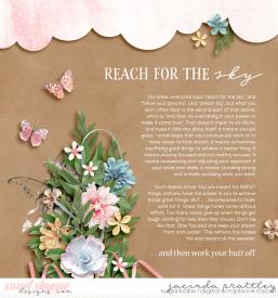 21-02-06-Reach-for-the-sky-700b.jpg