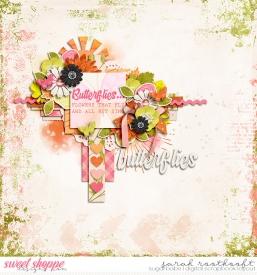 8NSDGrabBagButterflies_Shunshineweb.jpg