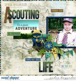 A-Scouting-Life-WM.jpg