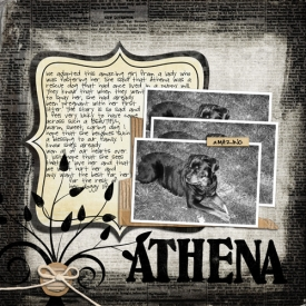 Athenas_Story.jpg
