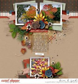 Autumn-leaves_b1.jpg