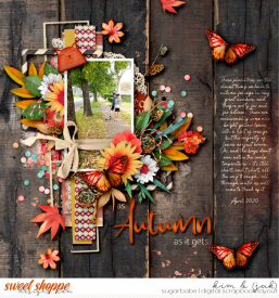 Autumn_b1.jpg
